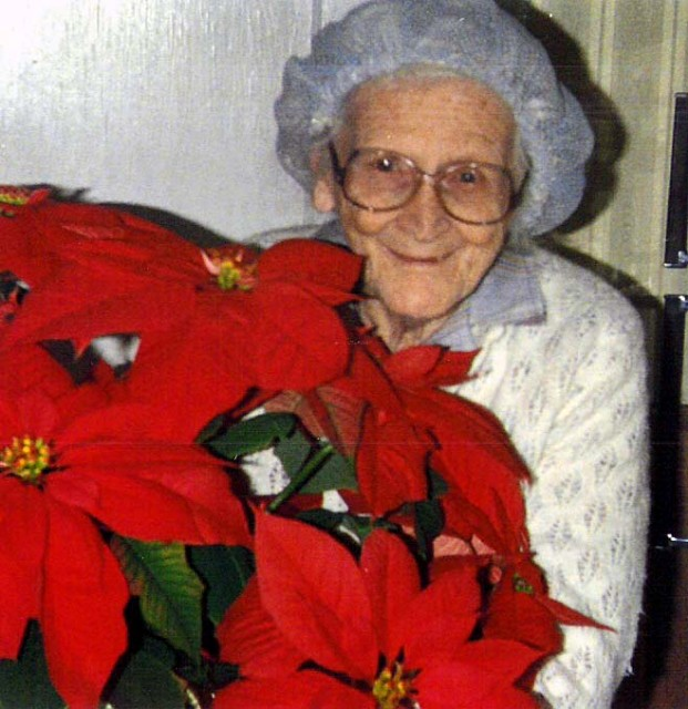 Granny_witb_poinsettlargewebview